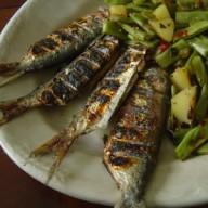 sardinha