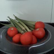 tomate quiabo
