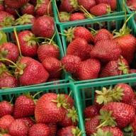organic-strawberries
